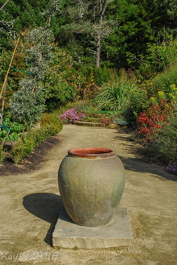 Plant Containers Garden Design